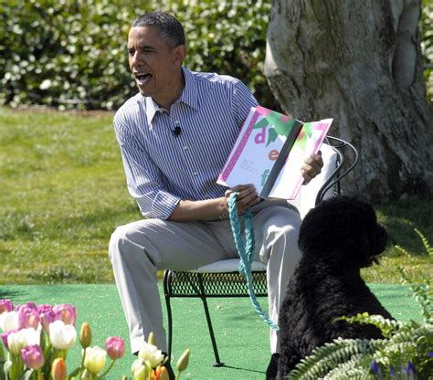 13 Reasons Why Bo Is Still The Only White House Dog That