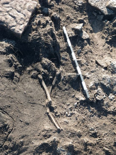 New discoveries tell more of the Sandby borg massacre