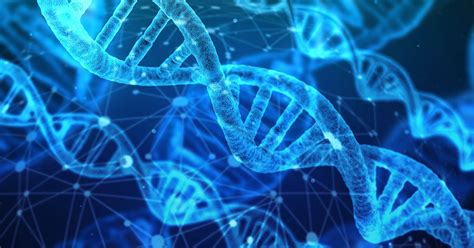 All about DNA - Curious