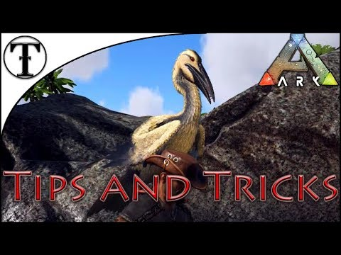 ARK: Survival Evolved Console Versions Receive New Update