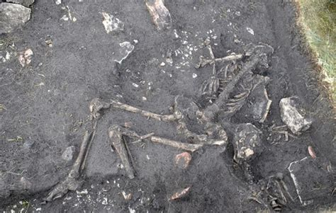 The Crime of Sandby Borg: Site of a 1,600-Year-Old Tragedy