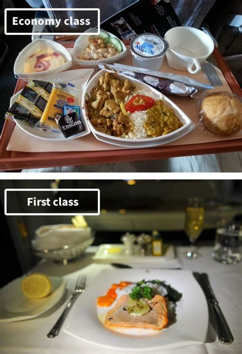 Comparisons Between Economy and Business Class Airline