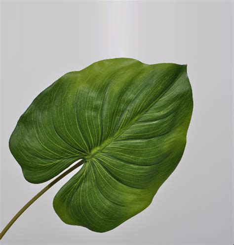 LUXURY FEEL REAL FAUX PLANTS | LARGE GREEN TROPICAL LEAF